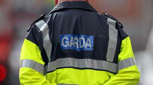 The Emergency Response Unit, the Garda Air Support Unit and the Garda Dog Unit were also heavily involved in 'Tempest'