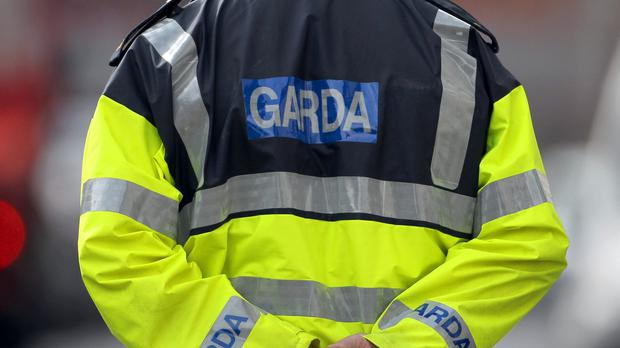 Crime costs businesses nearly €12,000 a year on average, the report said (Stock pictures)