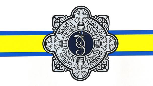 Gardai in Pearse Street station have launched an investigation