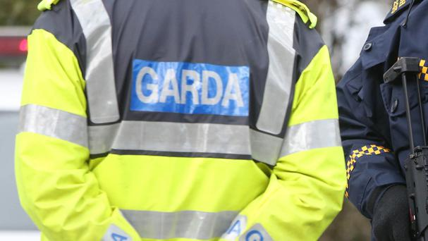 Man to appear before court in connection to €460k drug seizure