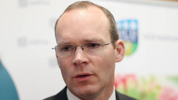 Simon Coveney has vowed to pursue justice for the families of two murdered Irish peacekeepers