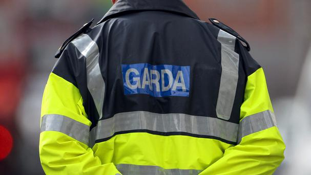 Gardai informed the Child and Family Agency that a house would be searched due to concerns that a child living in the house may have suffered sexual abuse.