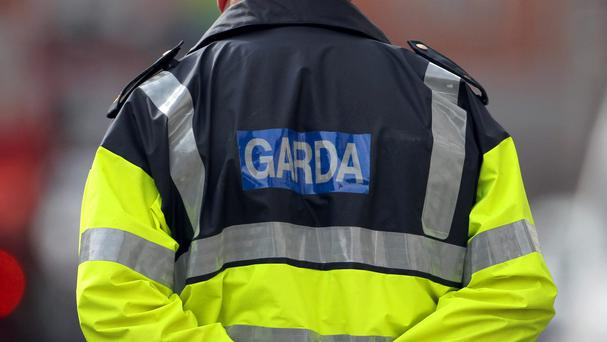 Gardai are investigating assault