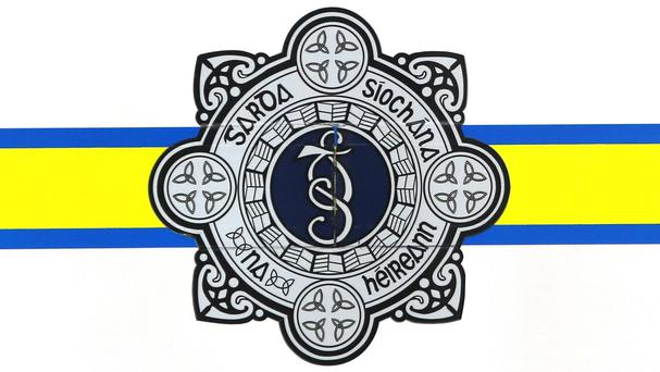 Gardai and the Health and Safety Authority (HSA) are both investigating the death of a four-year-old boy in an agricultural accident