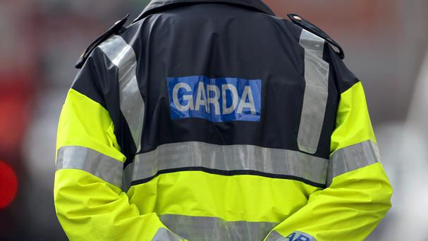 Garda pelted with eggs and milkshakes as he aided pregnant woman in car crash