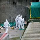Forensic officers at the Greenstar recycling facility in Bray, Co Wicklow