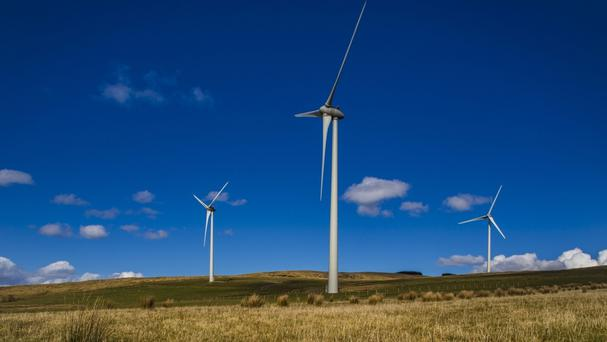 Bord na Mona plans to use its land bank for wind and solar power, willow plantations and other biomass