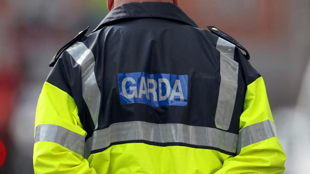 Gardai are appealing for witnesses to the incident