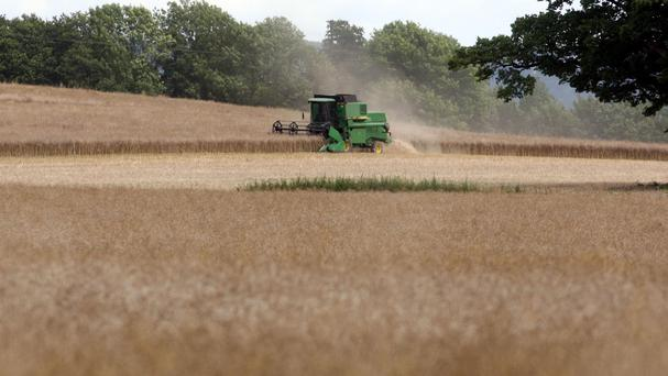 The problem for farmers is that in deciding whether the individual pays or whether the State pays, the Fair Deal scheme unfortunately includes the value of the farm in means testing an applicant. Stock Image: PA