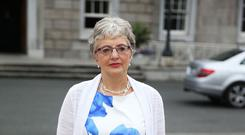 Minister for Children Katherine Zappone is said to have thought Tusla's role would be included in the inquiry