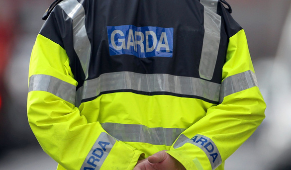 'The guards have shown gross incompetence, and then engaged in cover-ups to hide it; calling for Garda Commissioner Noirin O'Sullivan to stand down, or be fired, is a reasonable position to hold' (stock photo)