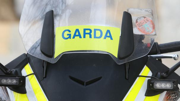The panel will set out reforms for An Garda Siochana