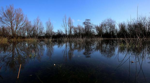 Residents in nearby Portarlington told to take precautions against potential further flooding