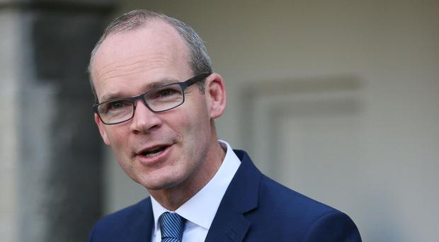 Tánaiste says Brexit transition period could take 'up to five years'