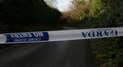 Doug and Lily Alexander, both 75, died with their adult sons, Stephen and Doug Junior, on the N25 in Co Wexford
