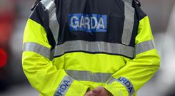 Gardai said the attackers smashed a downstairs window of the home in south Dublin