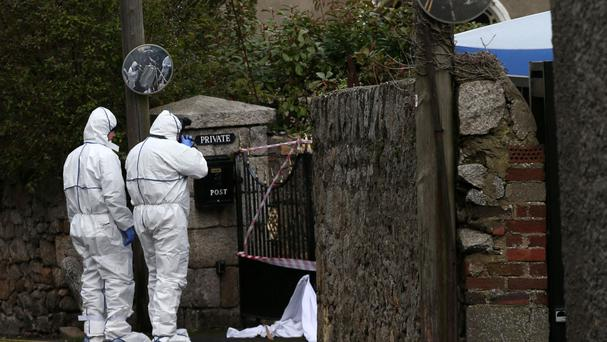 Probe after man found dead in Co Dublin laneway