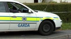 Gardai appealed for information after a girl believed to be one year old was returned to her parents after the theft of the car she was in
