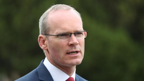 Simon Coveney said he was 'extremely concerned' about the allegations levelled by two Garda analysts (PA)