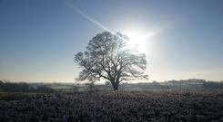 All parts of the country saw warmer-than-average temperatures in the month of December – but there was also a dearth of sunshine, with the weather duller than average.(Stock image)