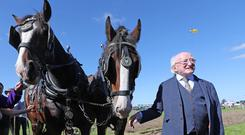 President Michael D Higgins at the National Ploughing Championships (Niall Carson/PA)