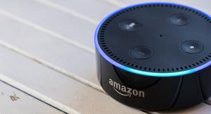 'I have no idea how Alexa's been passing the time, but every so often she announces, with the equivalent of an e-cough, that she's still here'