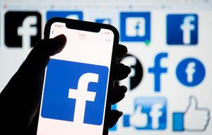 Drop: The amount paid by the likes of Facebook last year actually fell