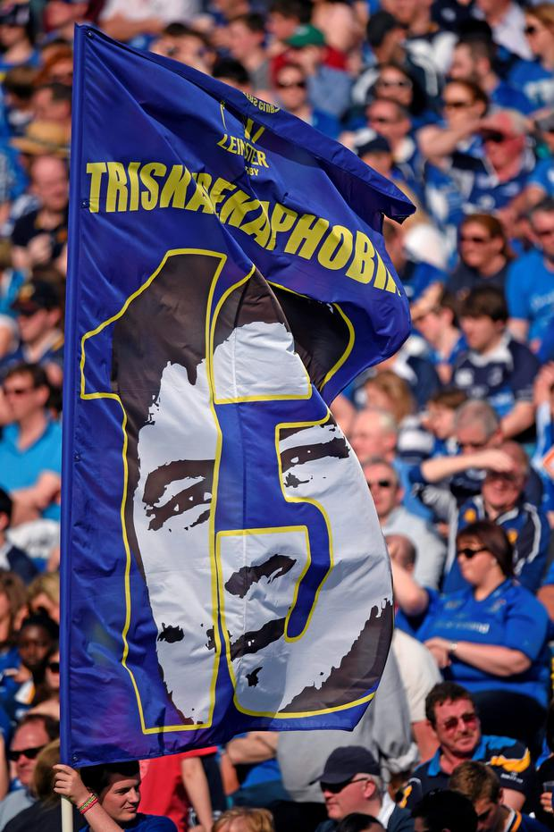 Leinster supporters pictured at the RDS