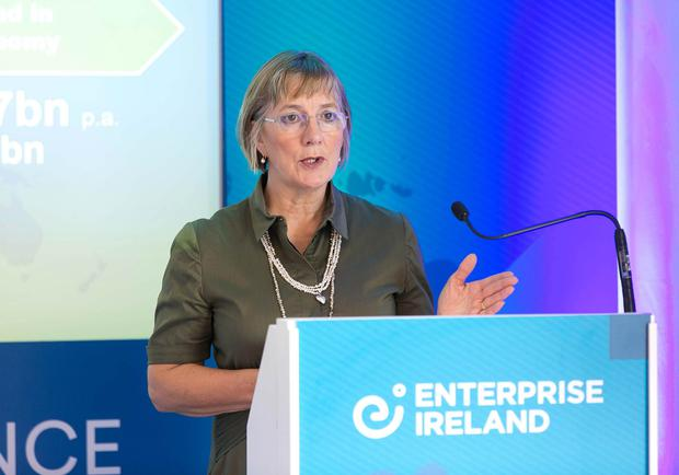 Challenges: Enterprise Ireland CEO Julie Sinnamon called for more innovation investment
