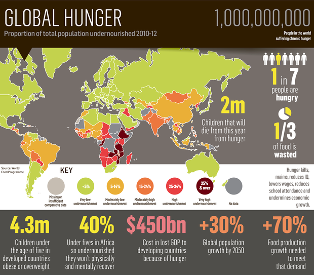 <a href='http://cdn4.independent.ie/business/article29624340.ece/binary/BUSINESS-Global-hunger.png' target='_blank'>Click to see a bigger version of the graphic</a>