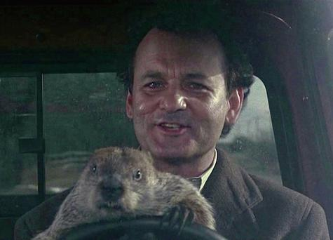 FAMILIAR DREAD: Bill Murray as Phil Connors in Groundhog Day. Every day is Groundhog Day in Ireland for thousands of small businesses when it comes to managing their payments