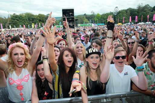 Fans enjoying the music at the Longitude Festival in Marlay Park last year. A total of 210,000 people attended concerts in the park last year on eight concert days.