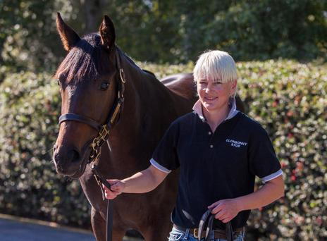 Pinhooker Denise O'Brien is making five figure profits on her thoroughbreds