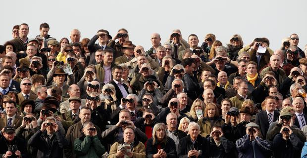 A general view of race goers watching from the stands at Cheltenham Racecourse