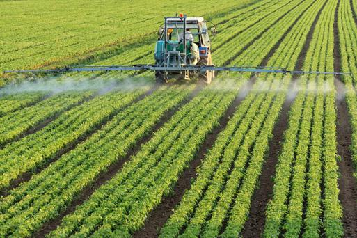 Montsanto makes the controversial weedkiller Roundup, the world's best-selling herbicide. Photo: (c) Ilfede | Dreamstime.com