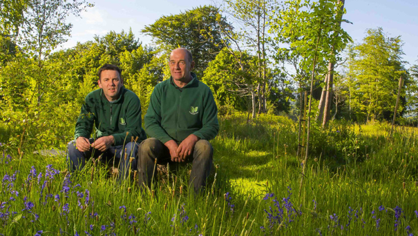 Colin McAteer (right) of Green Graveyard and Niall Deacon, caretaker at Woodbrook Natural Burial Grounds, Killane, Co Wexford. Photo: Patrick Browne