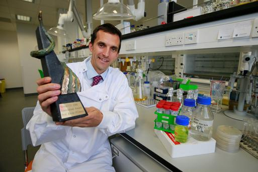 Professor Kevin O'Connor with the Nova UCD Innovation Award. Photo: Nick Bradshaw