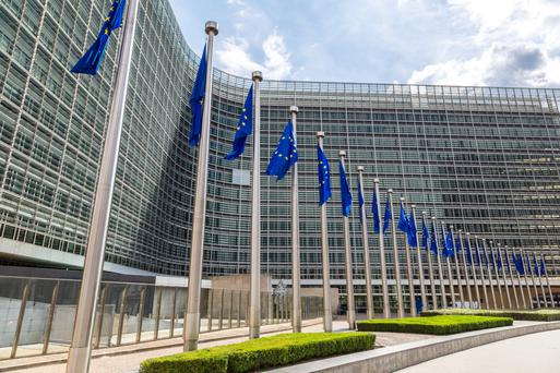 The European Council says the CAP needs to continue to ensure viable food production and a stable food supply, while taking into account food safety, the rural economy, animal welfare, and social and environmental concerns