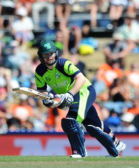 Paul Stirling in the 2015 ICC Cricket World Cup
