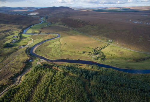 Over 1,000 acres of forestry land in Co Mayo attracted 80 bids