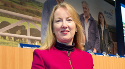 'Among the female chief executives of Irish-listed companies are Siobhan Talbot of Glanbia'