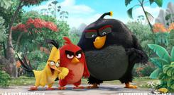 A scene from Angry Birds the movie, which Rovio released last year
