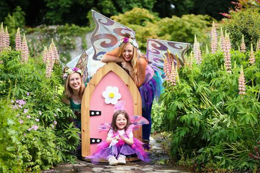 Little fairy Annabelle alongside fairy Clodagh and fairy Molly at the launch of the Fairy Festival, which was held over the summer in association with The Irish Fairy Door Company – losses at the company have increased due to expansion costs