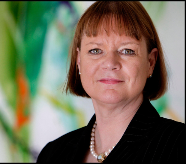 'One person who is concerned that we could slip back into ceo hubris is Professor Niamh Brennan'