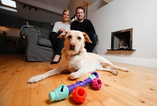 K9 Connectables founders Lauren and James McIlvena from Howth with Sandy the Labrador and his toys. Photo: Conor McCabe