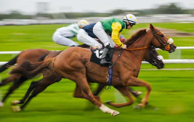 The horse racing industry faces staff issues