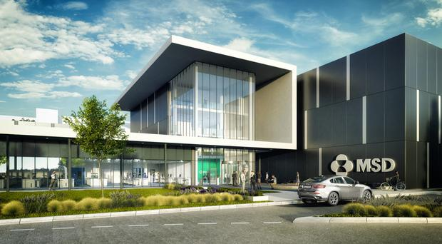 An artist's impression of the new MSD plant in Dublin