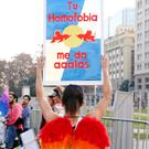Pride of place: A reveller takes part in the Pride parade in Santiago, Chile, this week – the banner reads: 'Your homophobia gives me wings'. Photo: Reuters