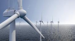 Wind of change: A range of offshore wind farms are in the pipeline. Photo: Fabian Schmidt
