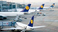Lufthansa airplanes stand on the tarmac at the Frankfurt am Main airport, Germany (Stock image)